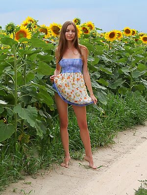 Admirable Teen Girl Stripping Clothes And Showing Attractive Body In A Field Of Sunflowers. Clothes pics